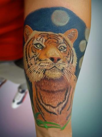 tatuaj-tigru-color